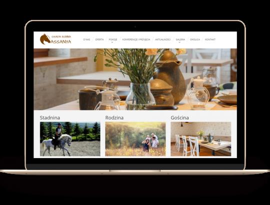 Assanya - strona internetowa